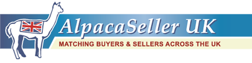 AlpacaSeller: Alpacas For Sale