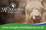 Houghton Hall Alpacas