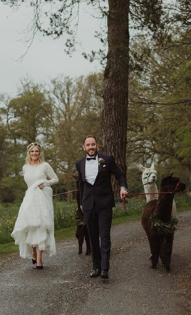 Mr and Mrs Every-Clayton photographed by Maureen Dupreez.  Alpacas courtesy of Bearhouse Alpacas!