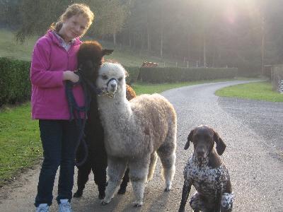 A family photo !!