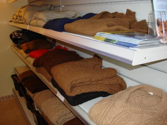 More Shop