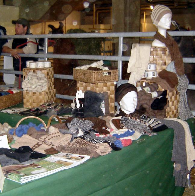 Swiss Expo 2011