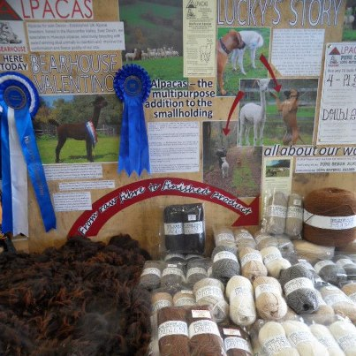 Our display at the Sidbury Fair, September 2012