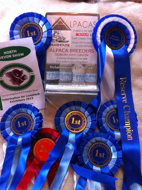 North Devon Show - 7th August 2013 - Five first prizes, Reserve Champion and one second prize!