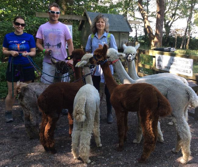 Alpaca Trekking - July 2014