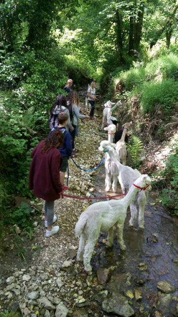 Trekking with students from Exeter International Language School - May 2017